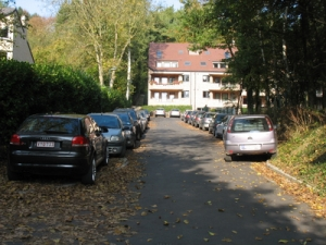 park imm 004-1
