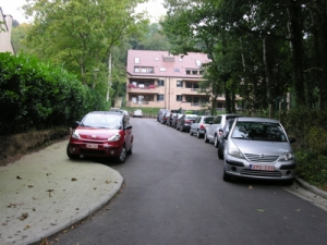 park imm 017-1