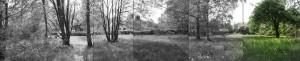 scouts,mare aux loups,parc de grimberghe,parc communal,jardins partagés,cpas