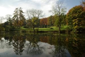 rixensart,drève des étangs,sentier 64,sentiers,promenades